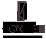 VoxNet | Web Solutions Logo